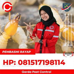 Jasa Semprot Rayap di Bandung Timur